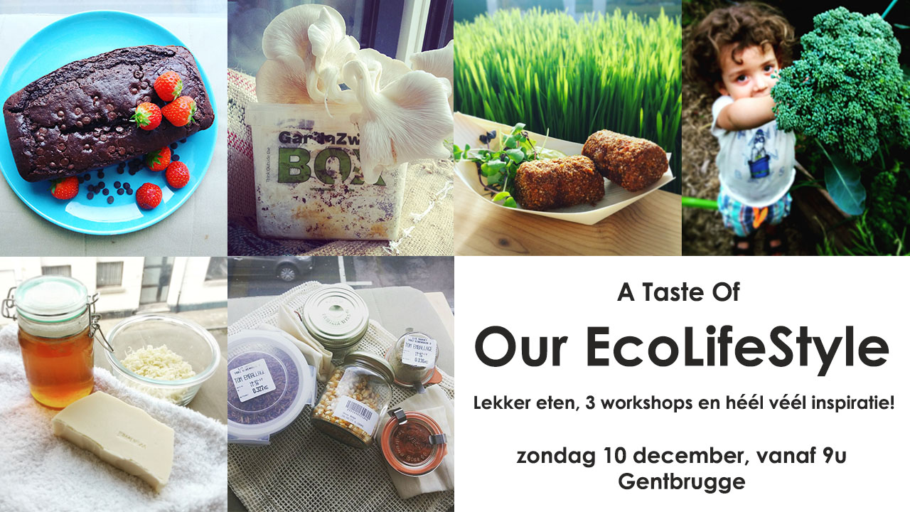 Workshop, Gent, Workshop duurzaam, duurzaam, GandaZwam, GandaZwamBoX, onverpakt, sustainable, zerowaste, lokaal, Nest, Gentbrugge, Sinterklaas, Kerstcadeau, Ecologische Kerstcadeau, permacultuur, OurEcoLifestyle, ZeepMaken, DIY, DIYGent, Etsy, EtsyGent, Ghent, Gante, Vegan, Vegano, Veggy, alternatief, Hippy, Eco